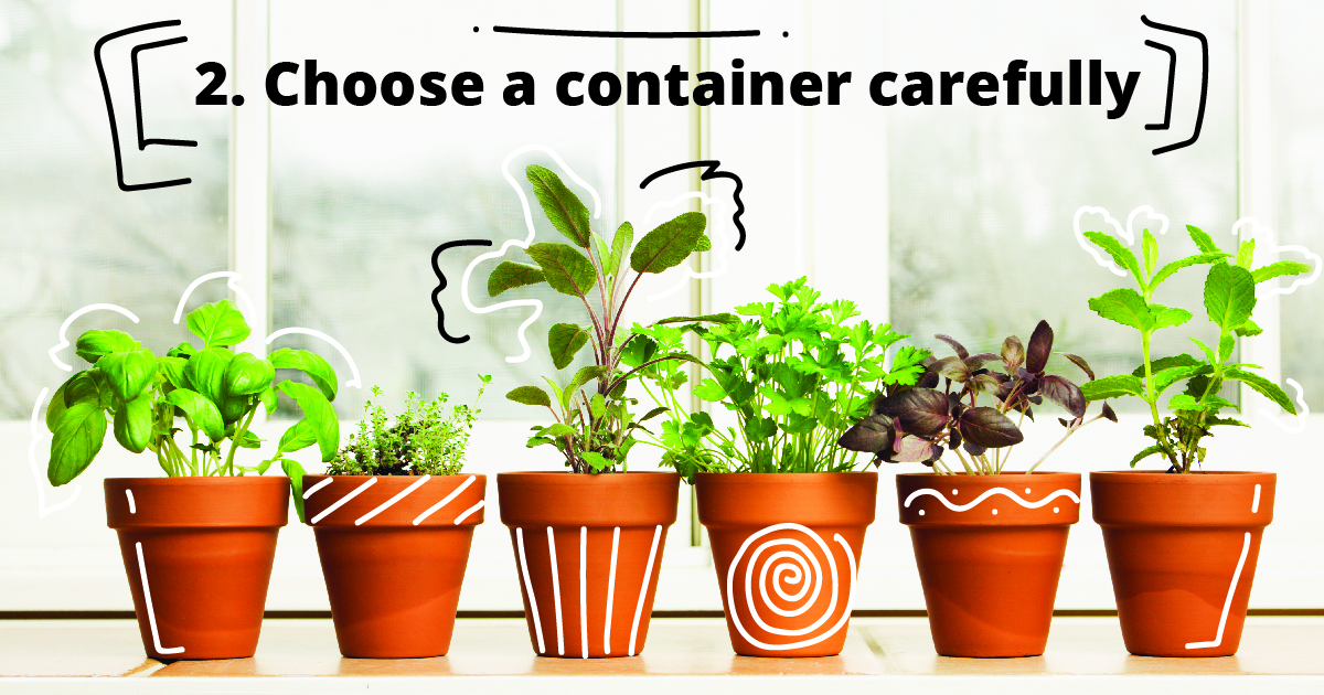 2. Choose a container carefully.